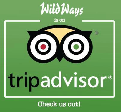 trip advisory