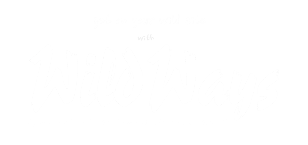 wildways logo- white clear -main